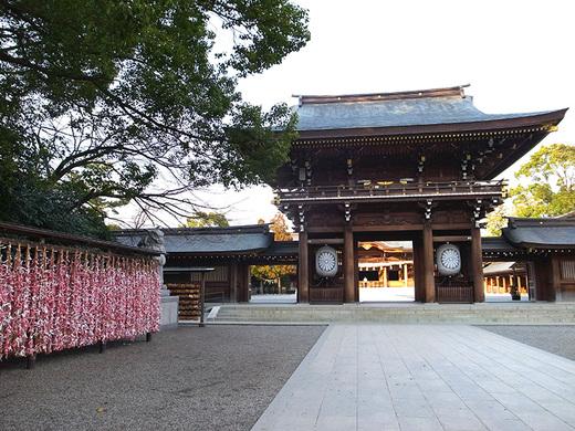 seichi1802.jpg