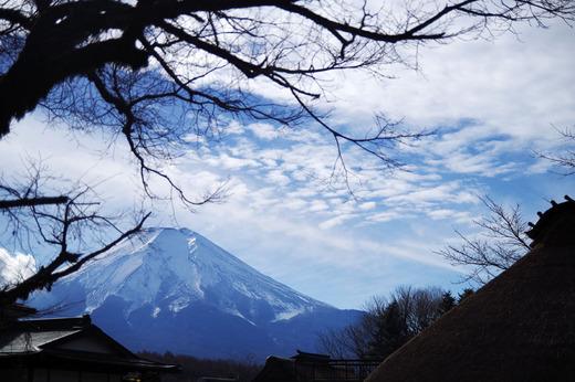 seichi2405.jpg